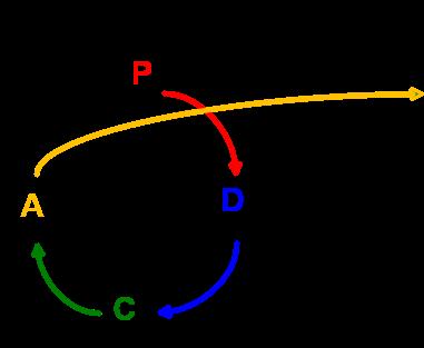 PDCA diagram